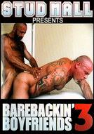 Barebackin' Boyfriends #3